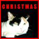 Santa Claus Christmas Jingle