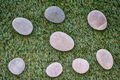 Bunch of stones lying on green grass - PhotoDune Item for Sale