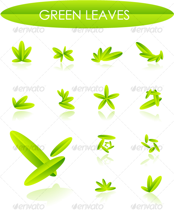 Leaves design elements - Nature Conceptual