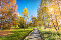 Autumn park with colorful trees, falling leaves on a sunny day. - PhotoDune Item for Sale
