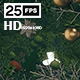 Christmas 05 - VideoHive Item for Sale