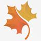 Maple Leaf Logo - GraphicRiver Item for Sale