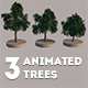 Animated Trees Set - 3DOcean Item for Sale
