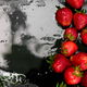 Whole strawberries on black background with water drops. Wet strawberries. Frame, copy space. - PhotoDune Item for Sale