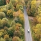 Aerial View. Flying Over The Road, Field And Beautiful Autumn Trees. - VideoHive Item for Sale