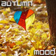Autumn Mood - VideoHive Item for Sale