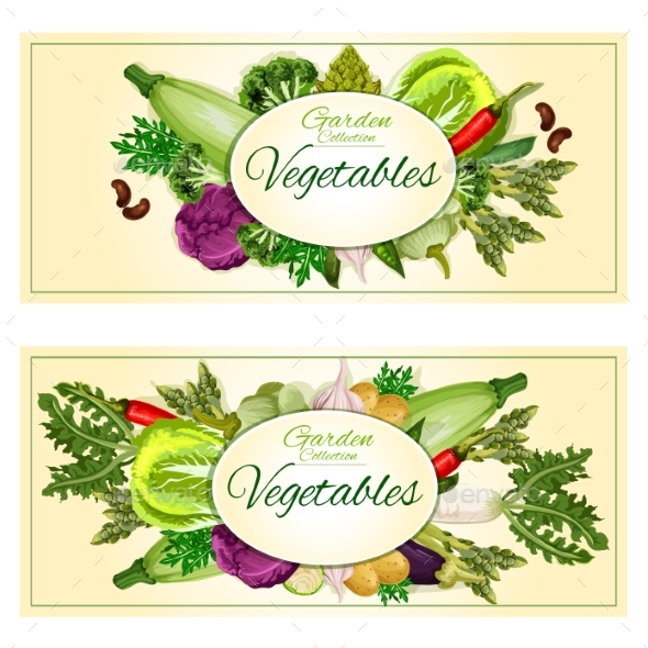 Garden Vegetables Vector Posters, Banners - Food Objects