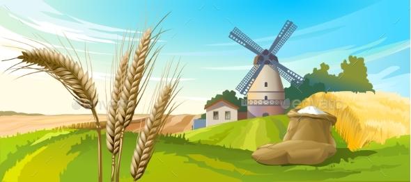 Vector Illustration Rural Summer Landscape - Seasons Nature
