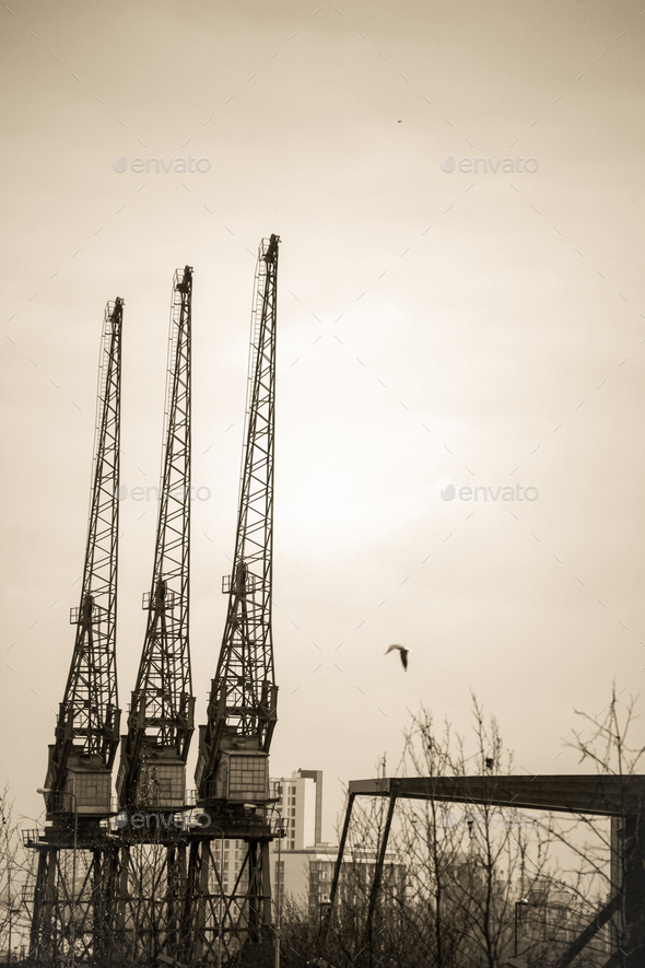 Cranes on the building site - Stock Photo - Images