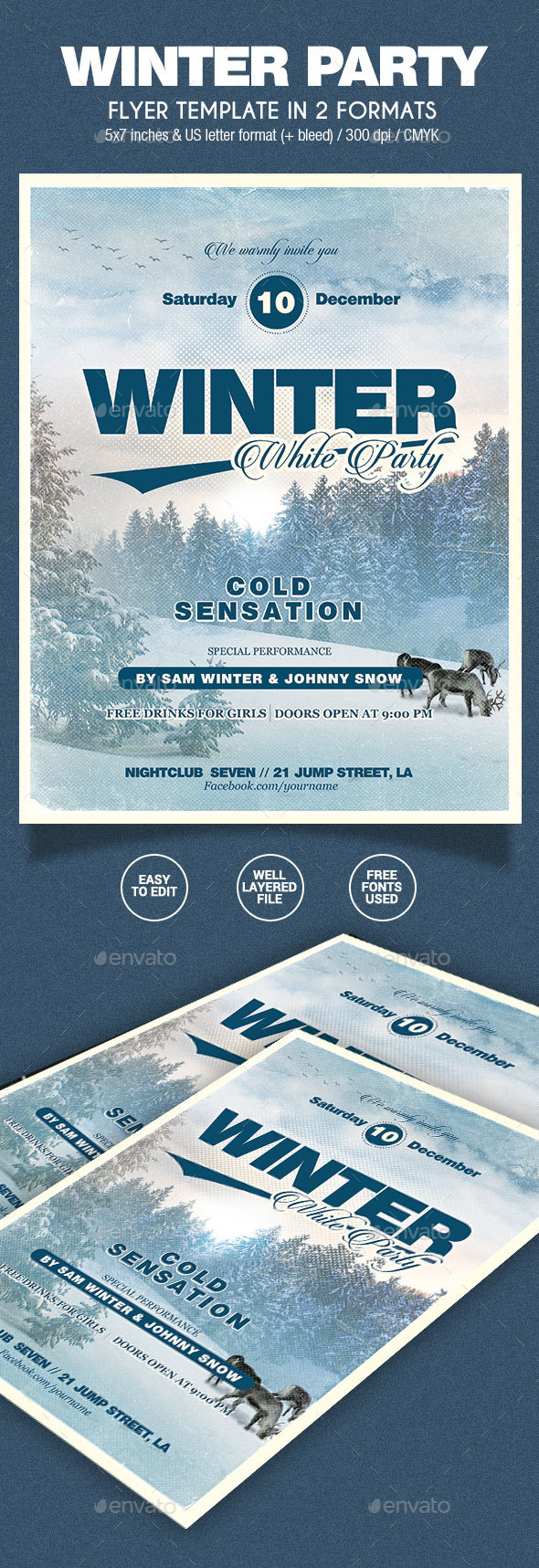 Winter Party Flyer - 2 Formats - Holidays Events