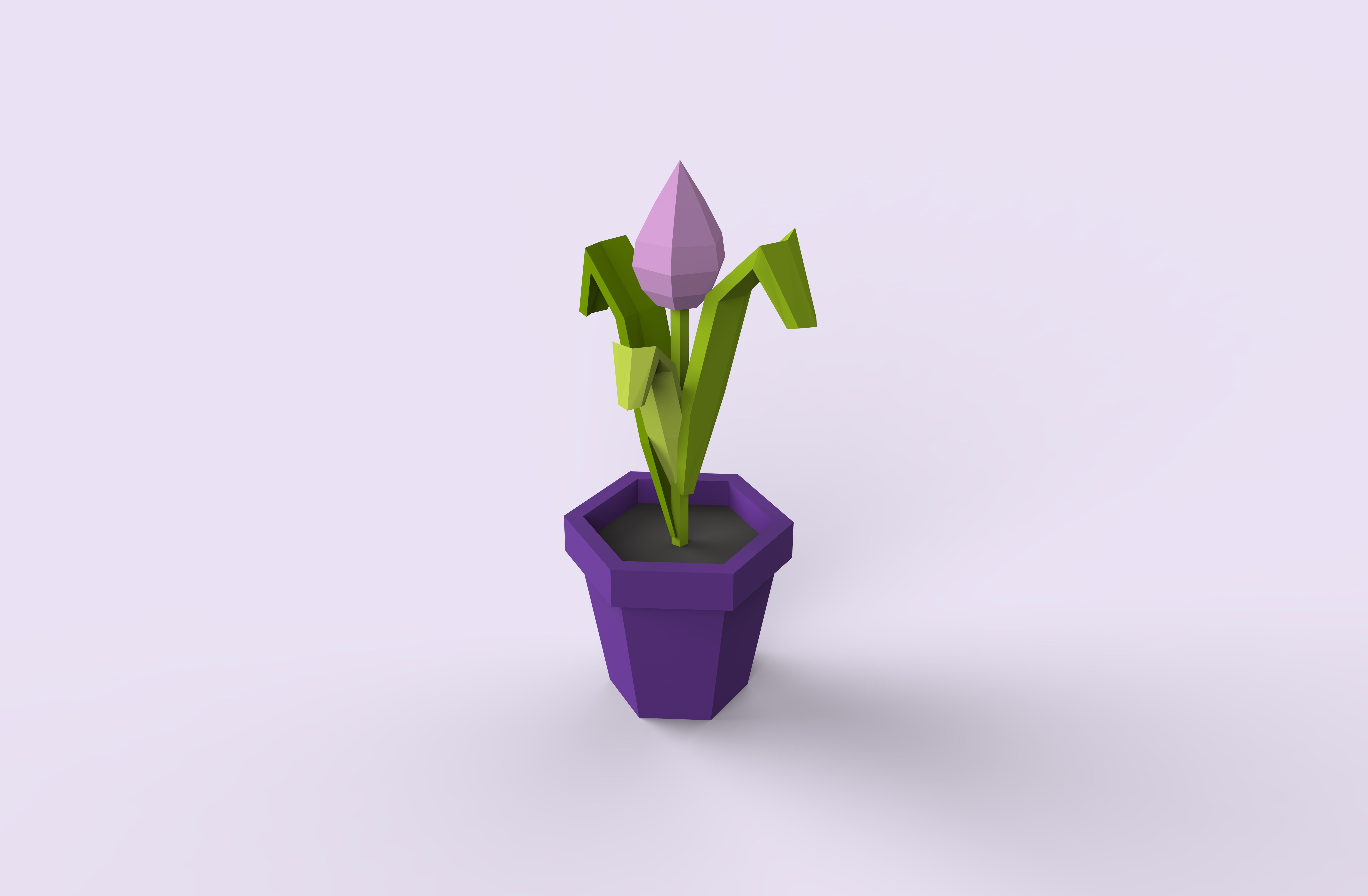 Low Poly Flowers In Pot By Scripka 3docean