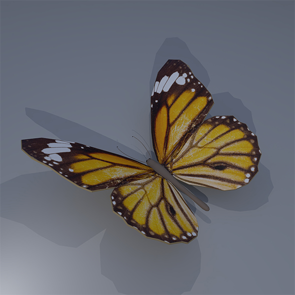 Simple Butterfly - 3DOcean Item for Sale