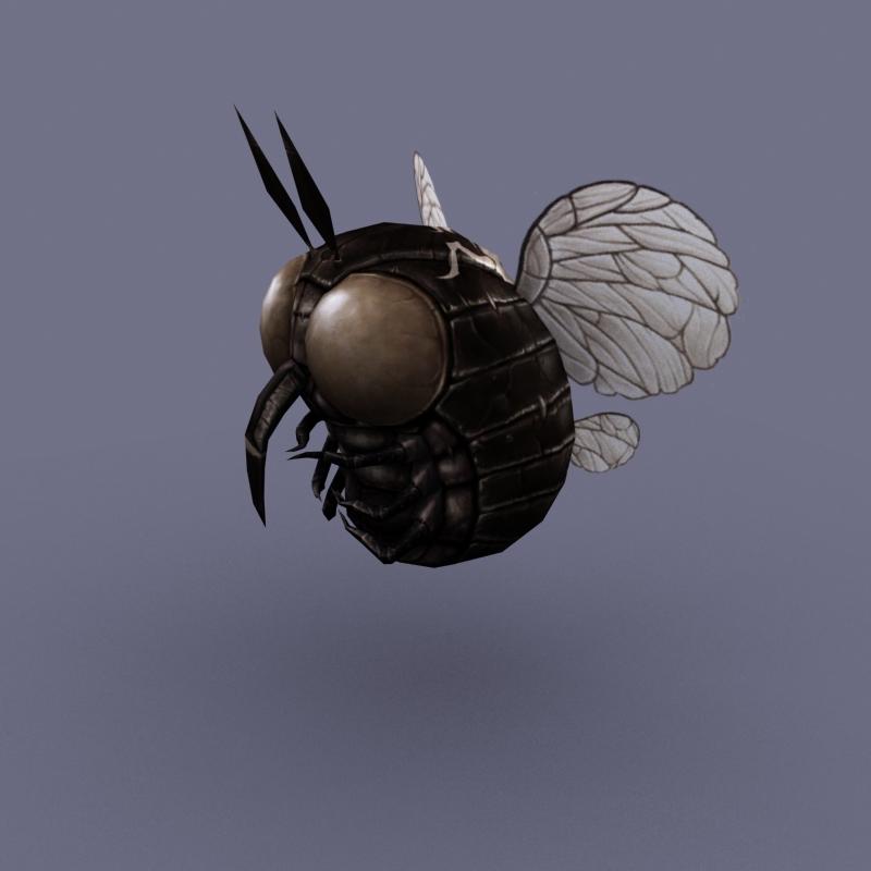 Fly Round 05