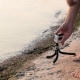 Man Installs Action Camera On Shore - VideoHive Item for Sale