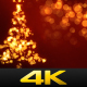 Christmas Tree Bokeh - VideoHive Item for Sale