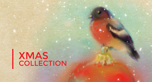 Xmas Collections