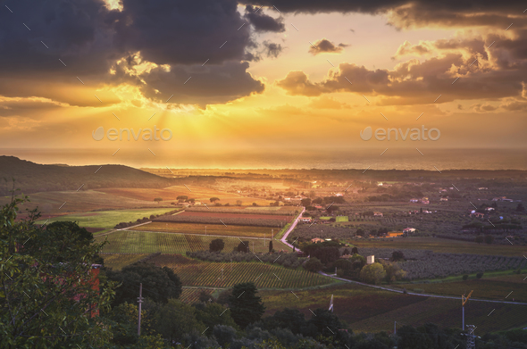 Bolgheri and Castagneto vineyard aerial panorama on sunset. Mare - Stock Photo - Images