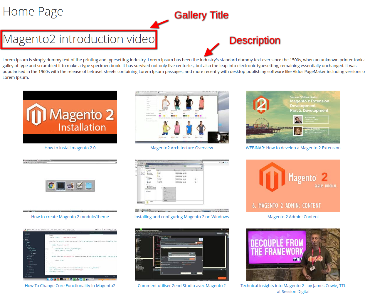YouTube video gallery magento2 extension