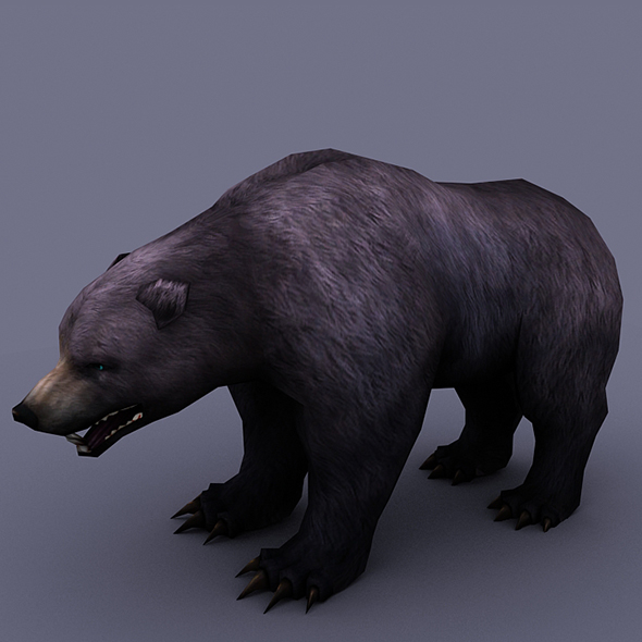 bear black - 3DOcean Item for Sale