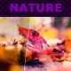 Nature Actions XI-Graphicriver中文最全的素材分享平台