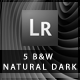 5 B&W Natural Dark Lightroom Presets - GraphicRiver Item for Sale