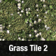 Grass Tile Texture 2 - 3DOcean Item for Sale