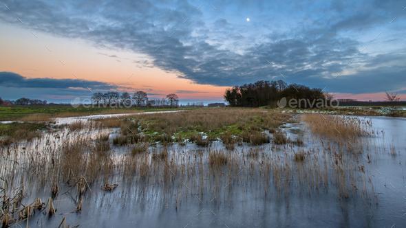 Forelands of the Tjonger river - Stock Photo - Images