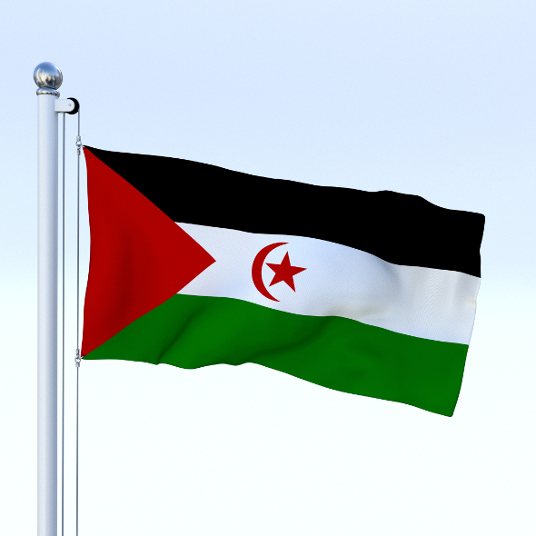 Animated Western Sahara Flag - 3DOcean Item for Sale