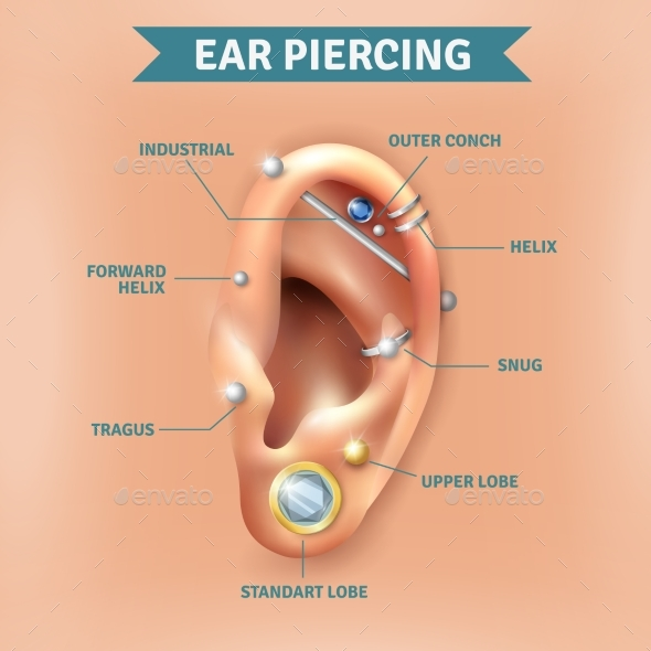 Ear Piercing Types Positions Background Poster - Miscellaneous Conceptual