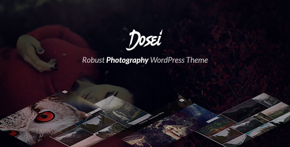 Dosei – Robust WP Theme for Photographers and Galleries