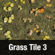 Grass Tile Texture 3 - 3DOcean Item for Sale