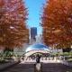 Cloud Gate Sculpture, View Autumn in Millennium Park - VideoHive Item for Sale