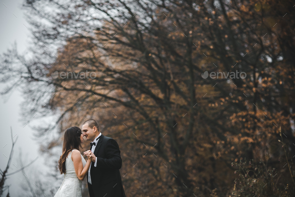 happy bride and groom posing in the autumn forest - Stock Photo - Images