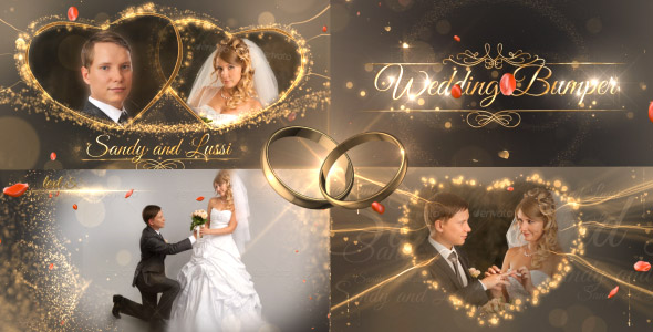 Wedding Package 18844092 - Vip