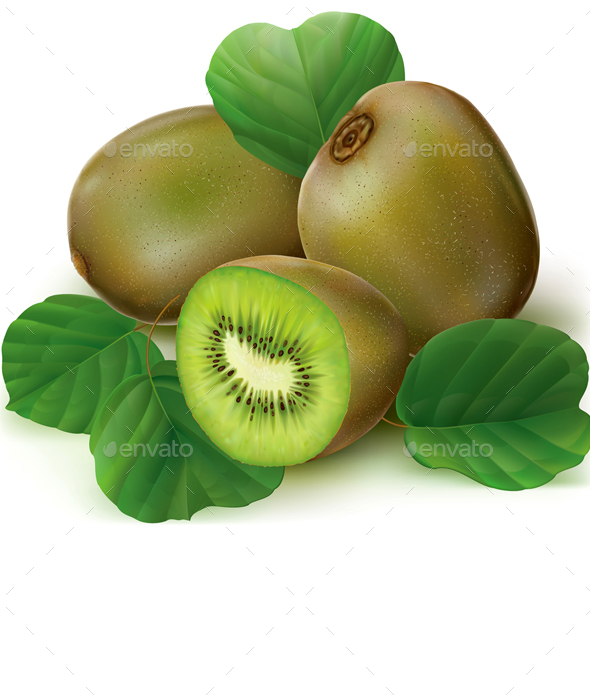 Kiwi Fruit Sliced - Organic Objects Objects