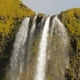 Stream of Icelandic Waterfall Seljalandsfoss - VideoHive Item for Sale