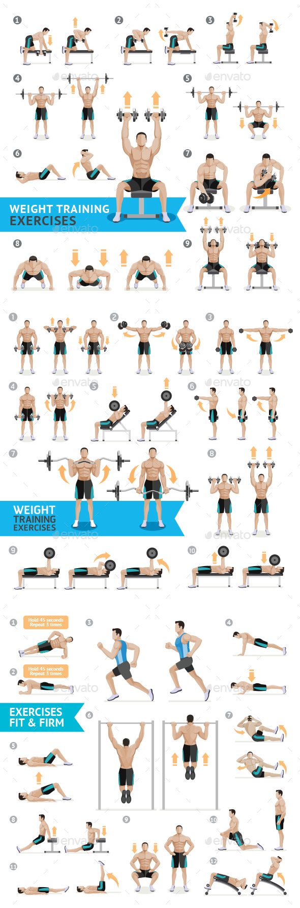 Dumbbell Exercises and Workouts Weight Training - Sports/Activity Conceptual