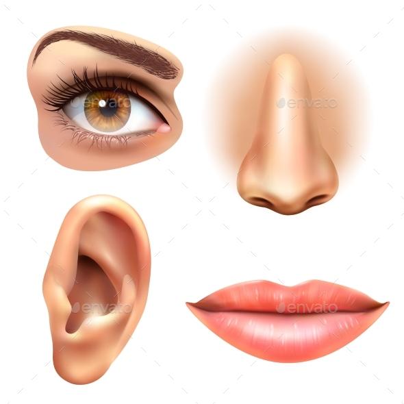 Eye Ear Lips Nose Icons Set - Miscellaneous Vectors