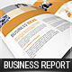 Business Report / Brochure - GraphicRiver Item for Sale
