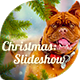Christmas - Slideshow - VideoHive Item for Sale