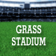 Grass Stadiam - VideoHive Item for Sale