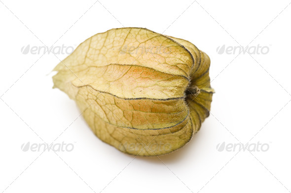 physalis fruit - Stock Photo - Images