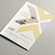 Business Brochure Vol.1 - GraphicRiver Item for Sale