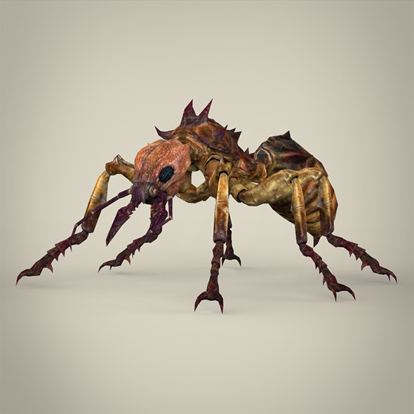 Fantasy Warrior Ant - 3DOcean Item for Sale