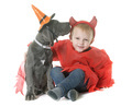 puppy great dane and little boy