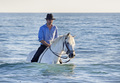horse rider in the sea - PhotoDune Item for Sale