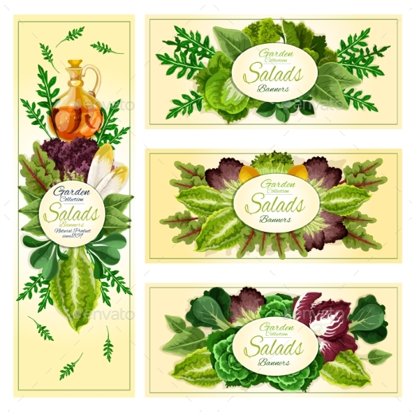 Salad Leaf Vegetable Banner Set - Food Objects