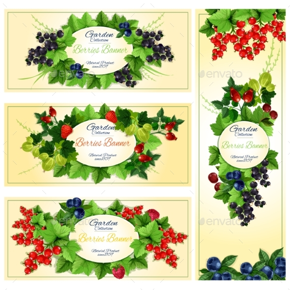 Berry Banner Set with Fruit and Leaf Frames - Food Objects