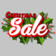 Christmas Sale Logo - VideoHive Item for Sale