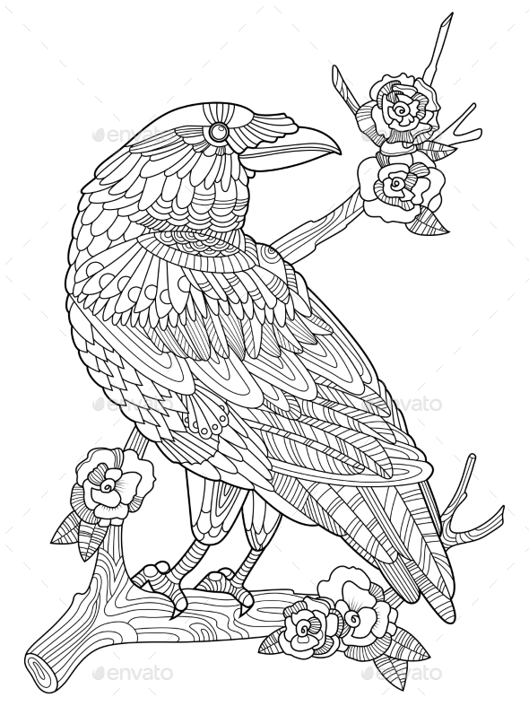 Crow Bird Coloring Book for Adults Vector - Tattoos Vectors